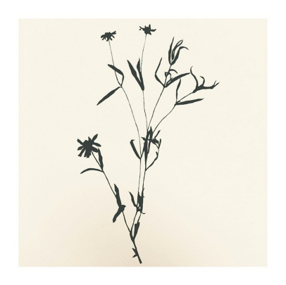 miabotanical